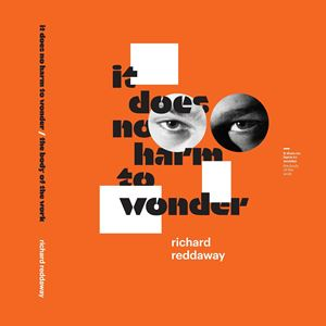 it does no harm to wonder / the body of the work by Richard Reddaway contemporary artwork