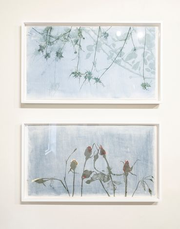 Exhibition view: Charlotte Verity,Echoing Green Part II: The Printed Year, Karsten Schubert, London (18 August–10 September 2021). Courtesy Karsten Schubert. Photo:Noah De Kostas.