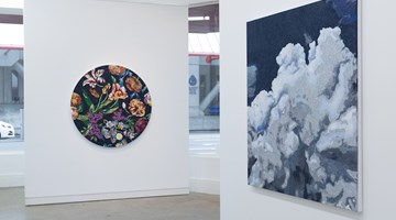 Contemporary art exhibition, Reuben Paterson, Land of the long stemmed cloud at Page Galleries, Wellington