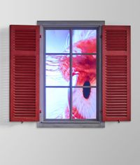Peeping Freedom Shutters tbc by Pipilotti Rist contemporary artwork moving image