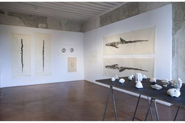 Exhibition view: Simryn Gill, Soft Tissue, Jhaveri Contemporary (16 January–2 March 2019). Courtesy Jhaveri Contemporary.