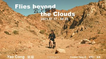 Contemporary art exhibition, Yao Cong, Flies beyond the Clouds at Capsule Shanghai