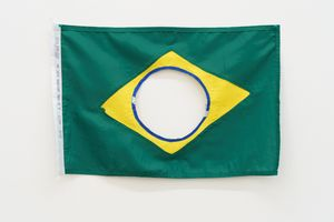 The New Brazilian Flag # 4 by Raul Mourão contemporary artwork