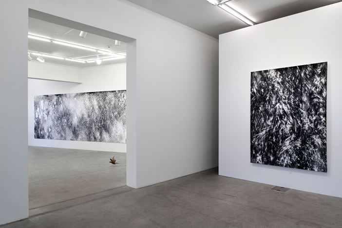 Exhibition view: Julia Steiner, circular flight, Galerie Urs Meile, Lucerne (5 March–2 May 2020). Courtesy the Artist and Galerie Urs Meile, Beijing-Lucerne.