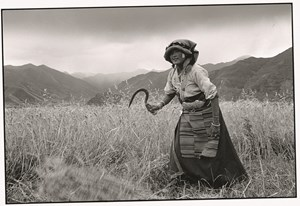 The Four Seasons - Everyday Life of Tibet Peasants by Lu Nan contemporary artwork