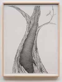 Living Fossil #3 by Faith Wilding contemporary artwork works on paper, drawing