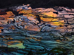 God's Palette by Thierry Bornier contemporary artwork