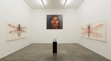 Contemporary art exhibition, Rodolpho Parigi curated by Bernardo Souza, Levitação at Galeria Nara Roesler, São Paulo