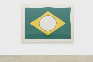 The New Brazilian Flag # 3 by Raul Mourão contemporary artwork