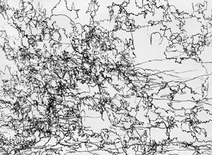 Herrischried-Grieshaber-Wiese by Gerhard Lang contemporary artwork