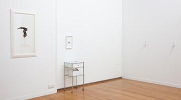Contemporary art exhibition, Julia Morison, M(O)USINGS at Jonathan Smart Gallery, Christchurch, New Zealand