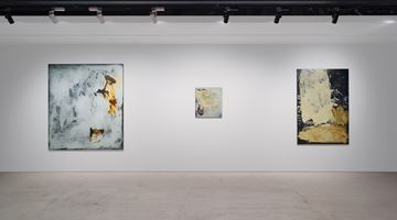 Contemporary art exhibition, Ryan Sullivan, Ryan Sullivan at The Club, Tokyo