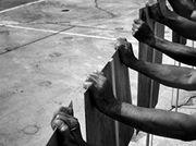'Uprisings', curated by Georges Didi-Huberman