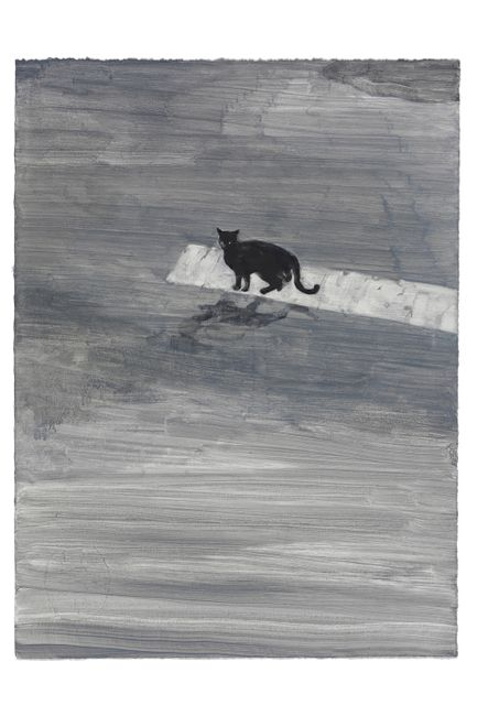 When a Black Cat Crosses the Street by Sodam Lim contemporary artwork