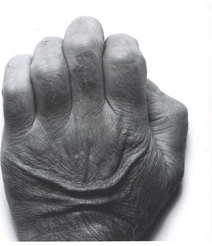 Self Portrait, Back of Hand by John Coplans contemporary artwork