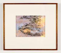 Beetle Umwelt II by John Wolseley contemporary artwork print