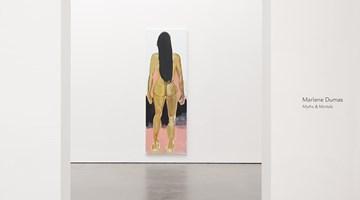 Contemporary art exhibition, Marlene Dumas, Myths & Mortals at David Zwirner, 20th Street, New York