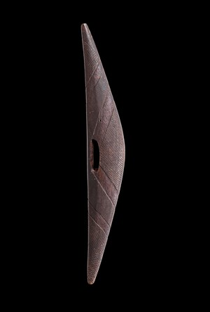 An Early Narrow Shield by Artist Unknown - New South Wales contemporary artwork
