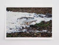 Fffffffffffffffff one * by Paola Pivi contemporary artwork print