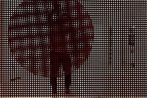 Turbilhão by Lucia Koch contemporary artwork